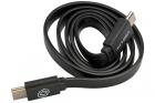 Câble Micro-USB pour USB-Link GATE