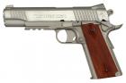 COLT Rail Gun Stainless culasse metal fixe